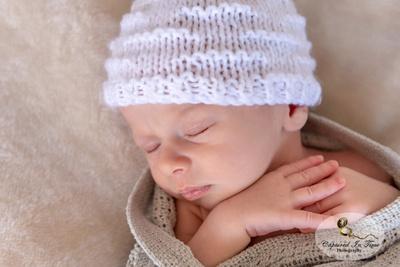 Family and Newborn Portraits
