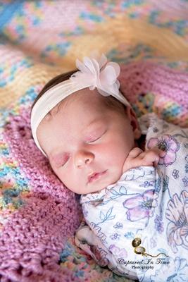 Family Portraits and newborn baby girl portraits